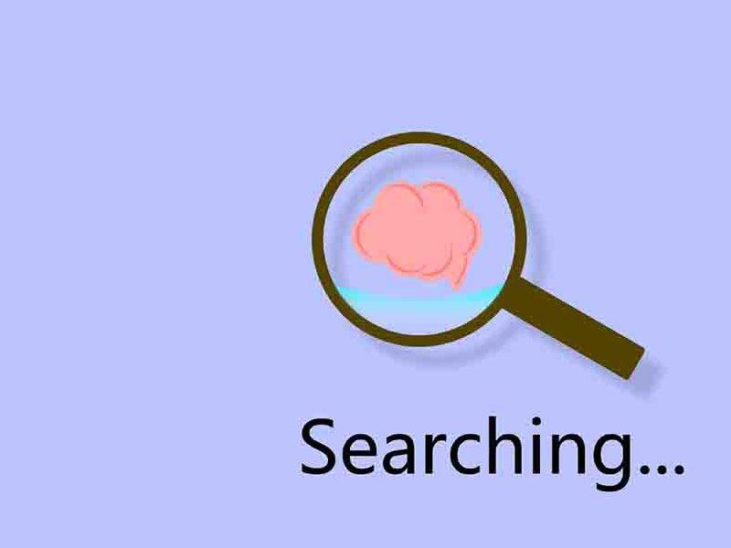搜索小知识